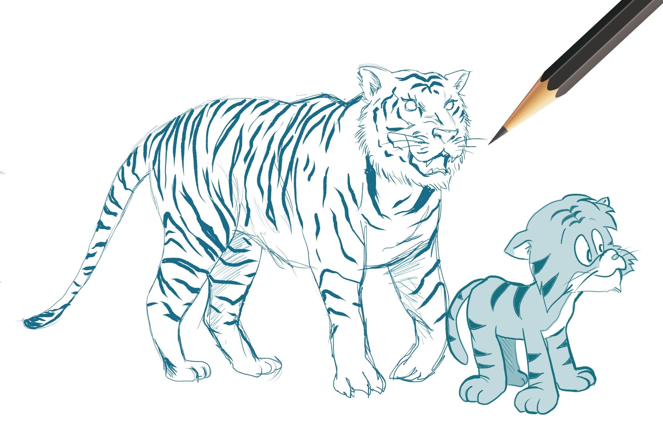 Tiger Cartoon Drawing Workshop